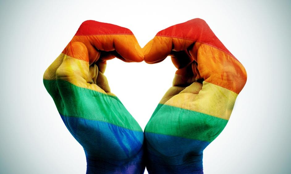 """זוג חד מיני לבג""""ץ: המדינה מפלה"""