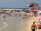 חוף סירונית. צילום ארכיון באדיבות עמותת צלול