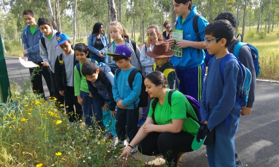 נתניה: לומדים בחורשת הסרג'נטים