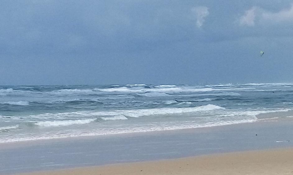 חוף פולג בין החופים המלוכלכים בארץ