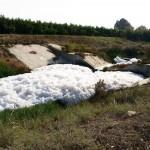 הזיהום בנחל אלכסנדר – פיגוע אקולוגי מתמשך