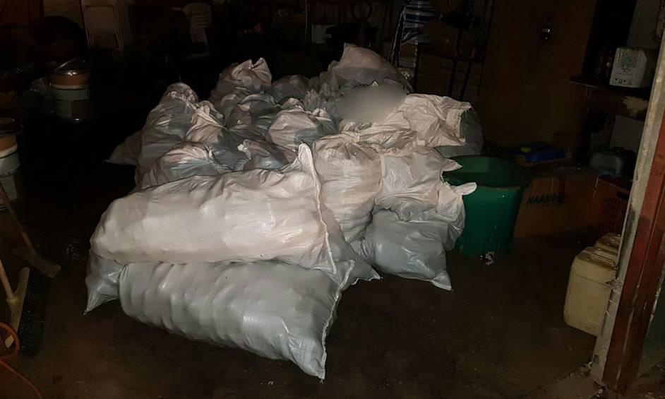 חשד: גנבו למעלה מ-2000 קילו אבוקדו ונעצרו